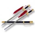 Tai Chi Sword Double