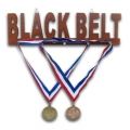 Black Belt Wood Medal Display